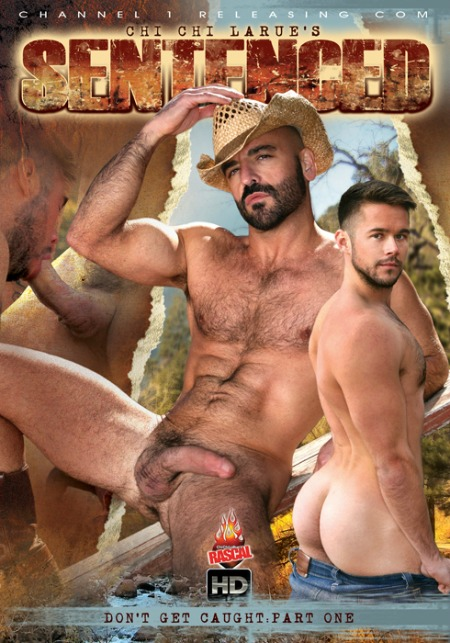 top-10-gay-porn-movies-of-2014-c1r-sentenced-chronicles-of-pornia-blog