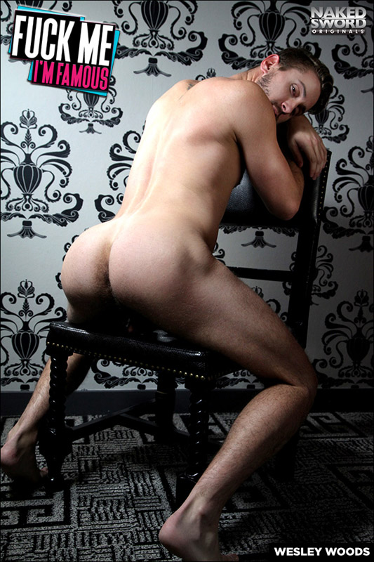 nakedsword-fuck-these-famous-asses-for-gay-porn-fame-wesley-woods-chronicles-of-pornia-blog